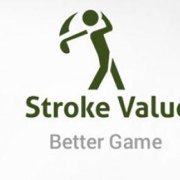 Już jest dostępna najnowsza wersja programu Stroke Value ® !