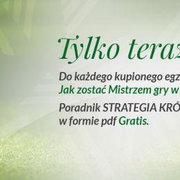STRATEGIA KRÓTKIEJ GRY już dostępna !